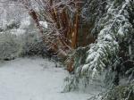 Spring snow Falmouth, VA