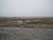 Beach, Cow's Head,  Northern Peninsula, newfoundland