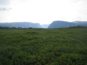 Gros Morne,  Northern Peninsula, newfoundland