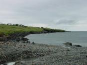harbor, newfoundland